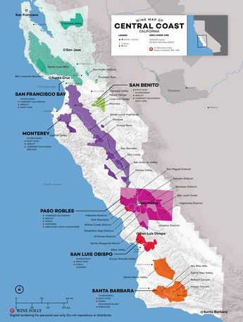 Central Coast Wine: The Varieties and Regions