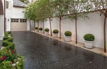 How to make your driveway part of your garden