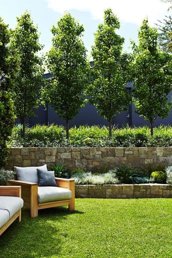 15 Gorgeous Living Fences For Your Yard