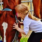 HORSESOUP, Horse Health, Horse Trailers, Horse Boots, Tack, Camping Gear, Hoof Care, Saddle Pads Pinterest Account