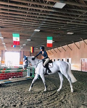 Basic Rules About Horseback Riding For Beginners