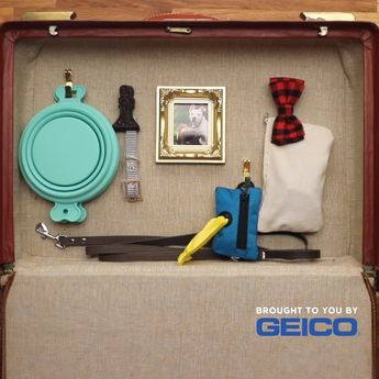 Upcycle any old suitcase into a doggy travel bag to make your road trip stress and distraction-free! It's as easy to make as switching to GEICO, where you could save 15% or more on car insurance. #Dogs #Pets #Puppy #DogBed #Animals #RoadTrip #Cars #DIY #Crafts