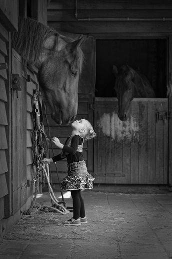 Little girl stretching up to kiss big horse. So sweet. Horse photography by Pete... - Irina