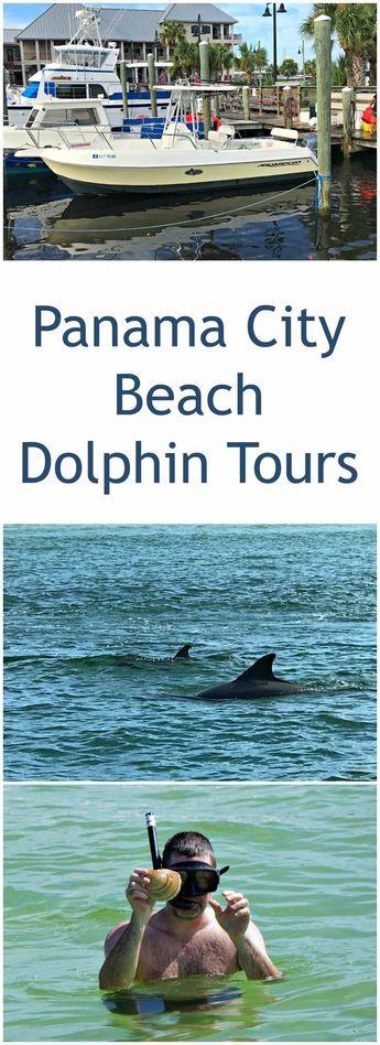 Panama City Beach Dolphin Tours