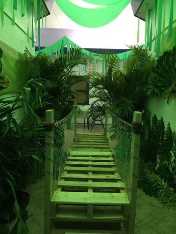 One of 2 finished bridges and entrance to our rainforest