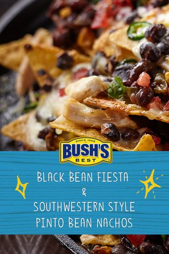 Bush's® Black Bean Fiesta™ & Southwestern Style Pinto Bean Nachos