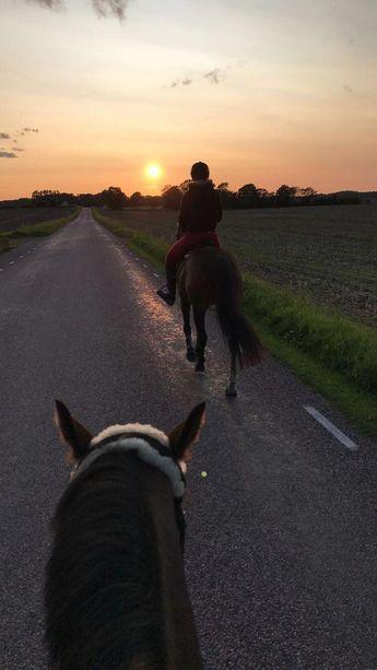 #horseridingstyleequestrianfashion