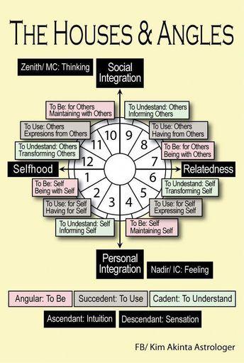 Life Path Number 11 | #numerology #lifepaths #lifepath11 |