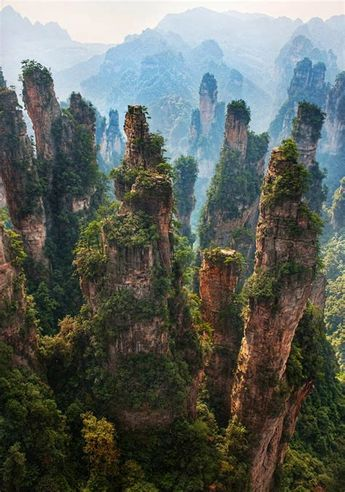 Zhangjiajie National Forest Park, China - Ecosia