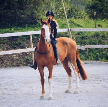 Open with Hadley)) I was out riding Bubba thinking I was alone so I just gave it my all and we cleared all jumps bareback and bridle less