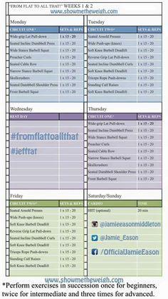 12-week Workout Program (SimplyShredded com)