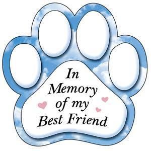 In memory of Makaya, Daisy, Little Bit and Juggalo- we miss you all and love you so much see you again soon!
