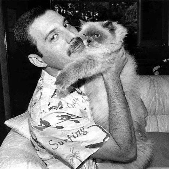 Freddie Mercury (11)