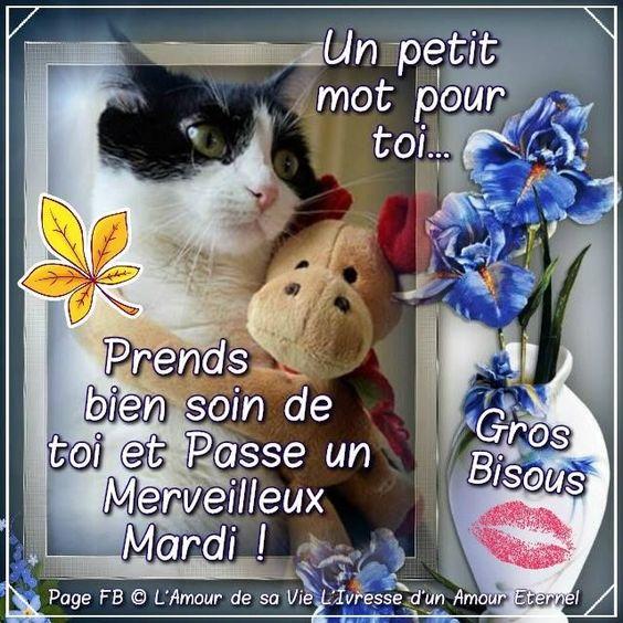 Un petit mot pour toi... Prends bien soin de toi et Passe un Merveilleux Mardi ! Gros Bisous - Chris Lalu - #bien #Bisous #Chris #de #gros #Lalu #Mardi #merveilleux #mot #passe #petit #pour #prends #soin #toi