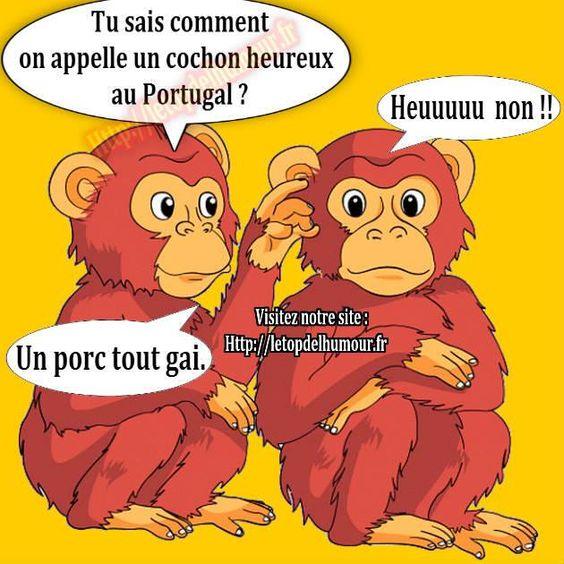 le porc au Portugal 201bab05b84e14c16499493d7dd32982