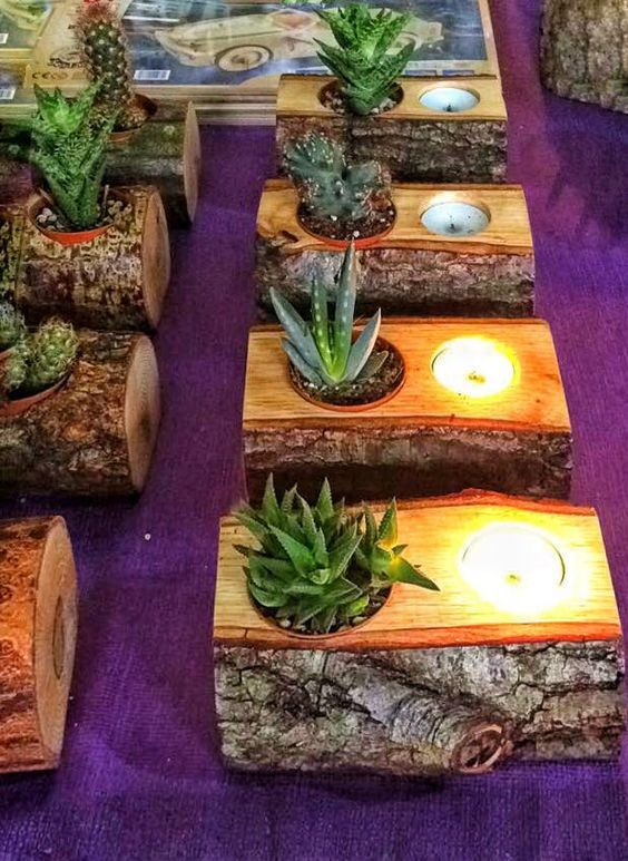 Succulent, candle holder, natural wood