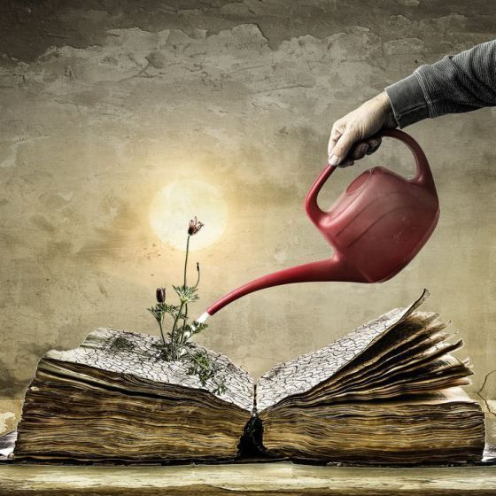 Very few #writers know what they are doing until they've done it. ANNE LAMOTT #amwriting #Art Christine Ellgerpic.twitter.com/hhO5Xnz9GP