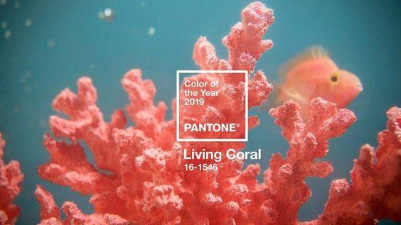🍑 Living Coral é a cor de 2019 - Depois de um ano com roxo, chega a hora de conhecer a próxima cor do ano segundo a Pantone. Para 2019, a cor escolhida é um tom vibrante e ao mesmo tempo suave de coral chamado Living Coral.