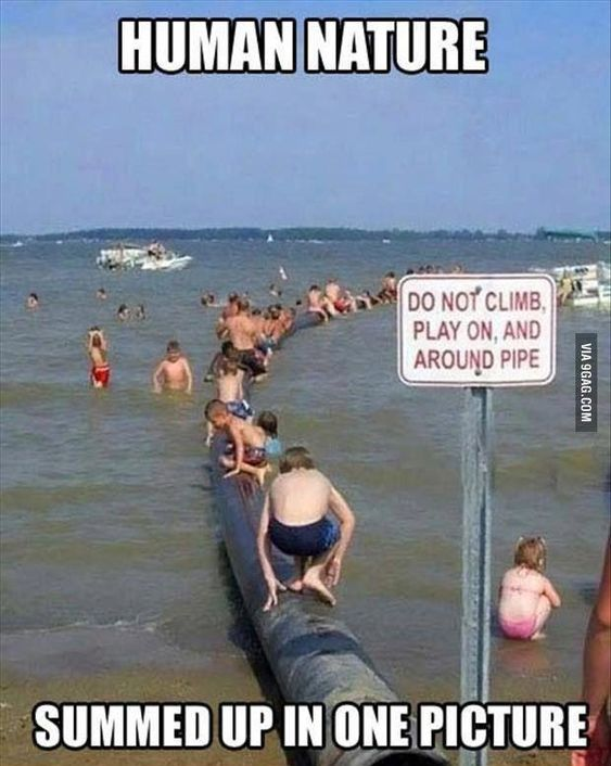 "Human nature ""hence, our logic.. -rules are made to be broken-"" #funnypictures"
