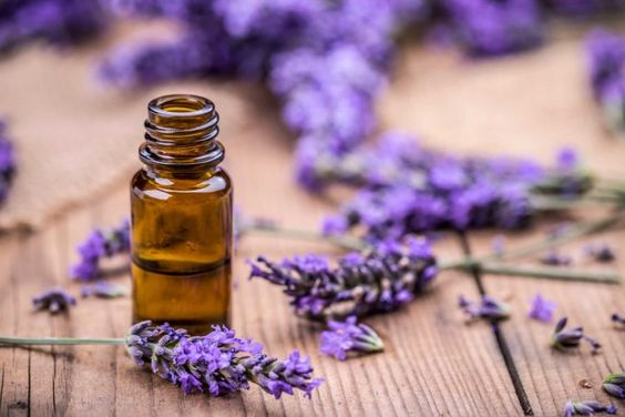 essential oils for bunions