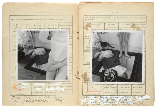 Francesca Woodman - Some Disordered Interior Geometries, New York, 1980-81. Artist's book with 16 gelatin silver prints.