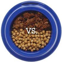 dry kibbles and wet food in a bowl