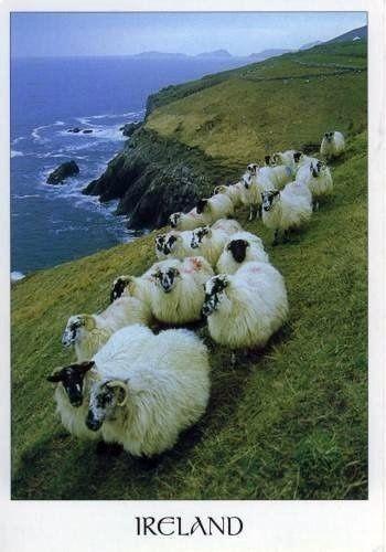 Ireland by jacqueline