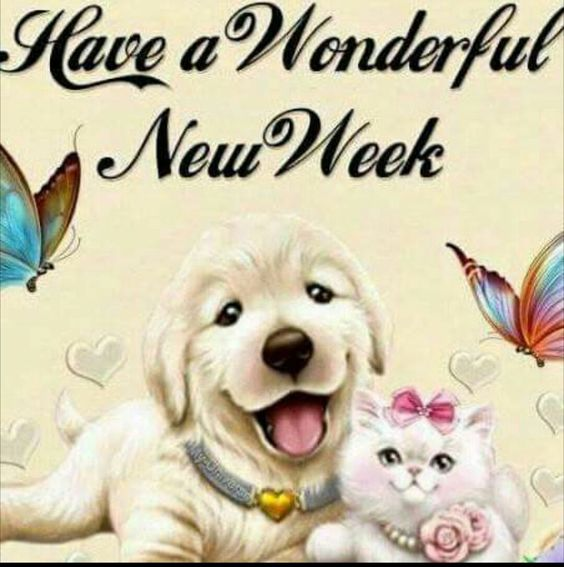 New Week Greetings