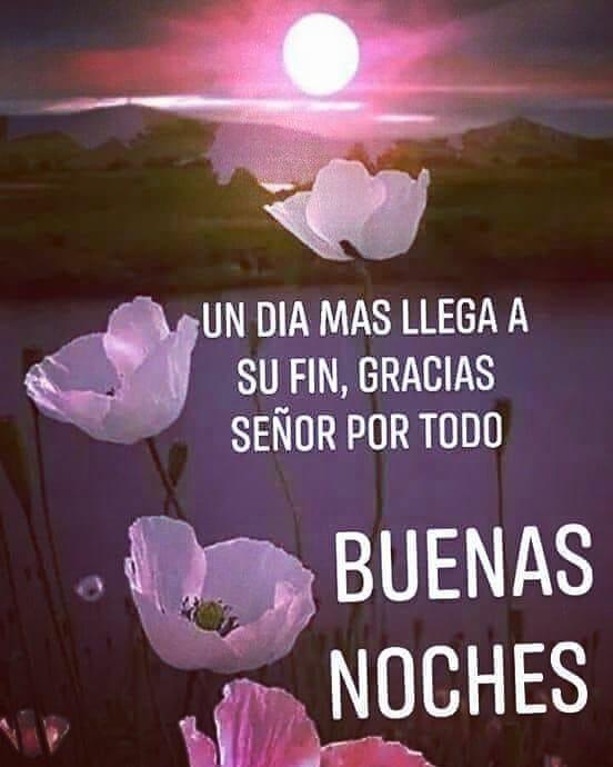 """Noelia Jiménez on Instagram: """"Llegó la hora de descansar !! Muy buenas noches .....en unas horitas otra vez nos saludamos !!! Besos!! #descanso #quecalor #buenasnoches…â€"""