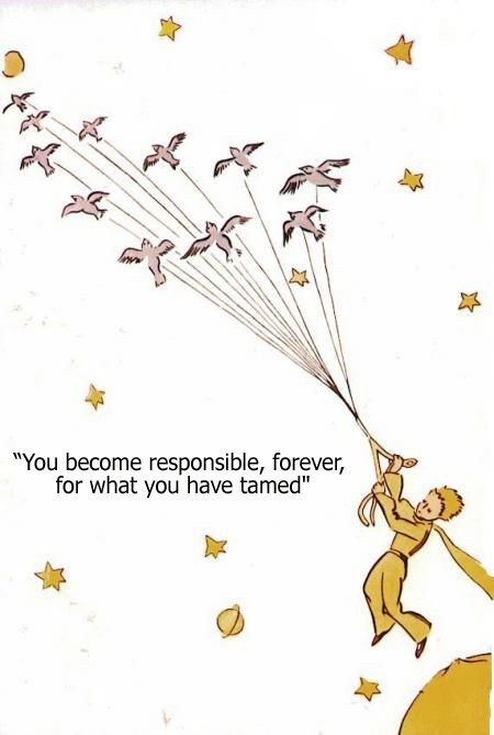 """You become responsible, forever, for what you have tamed"" -The Little Prince  ...still my favorite book."