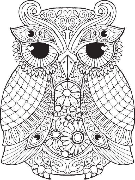 eule malvorlage - eulen zeichnen & malen | malvorlagen