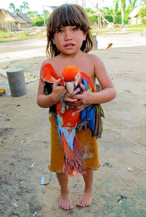 Beautiful little boy with a pretty bird.