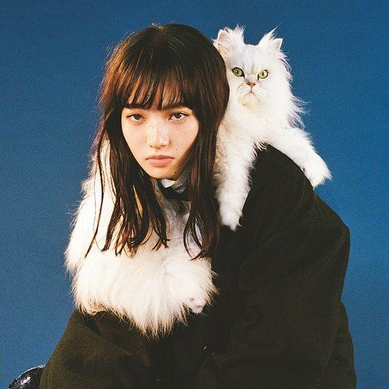 ペルシャ猫とオシャレで可愛い小松菜奈