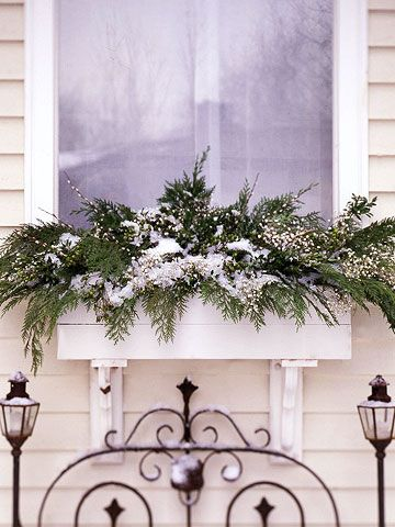 I don't have avery nice view from my kitchen window so I try to keep something pretty in the window box year round. I bought a bunch of ...