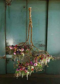 fiori appena colti