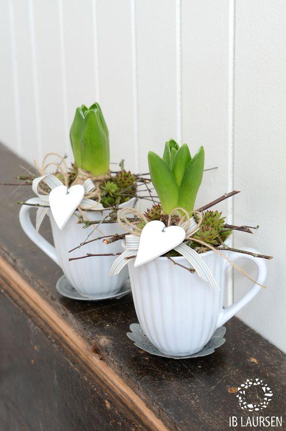 tazze e fiori.