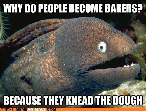 Bad Joke Eel: Their Profits Rise