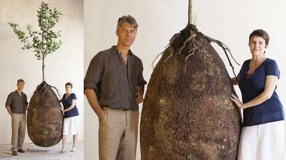 Capsula Mundi aims to help you turn into a tree after you die