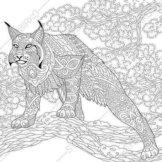 Wildcat Lynx Bobcat Caracal Coloring Page By Coloringpage