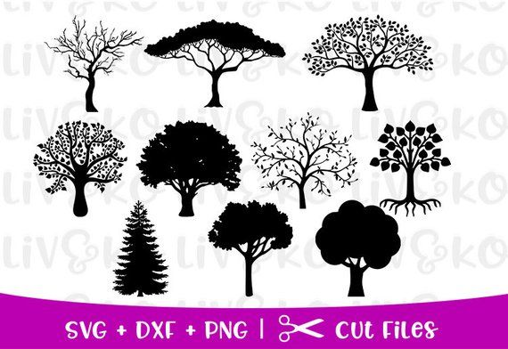Trees Svg Bundle Trees Cut File Trees Silhouette Trees